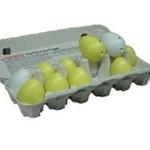 eggloggersresized-342.jpg
